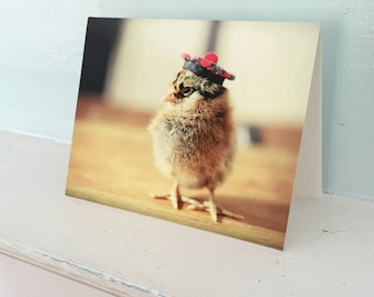 Chicks In Hats Card Chicken Wearing A Tam O Shanter Scottish Cap Folded Photo Stationary