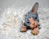 Needle felted kitten Sphynx. BJD from wool. Animal portrait. Collectible toy. OOAK doll. Feline lovers gift. Realistic cat. Handcrafted.