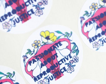 Passionate About Reproductive Justice: Pro Choice Stickers