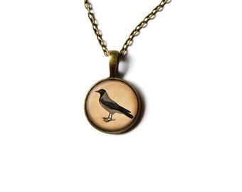 Crow pendant Bird jewelry Raven necklace NW223