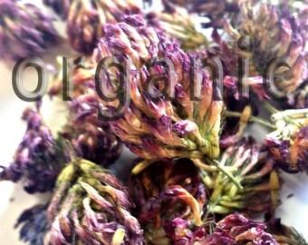 Red Clover. Dried Organic Herbal tea 30g.