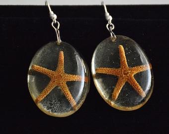 Dangle Starfish Earrings