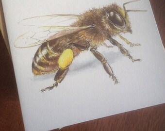 blank card, greetings card, birthday card, bee, honey bee, recycled card, recycled greetings card, blank greetings card, bee card,