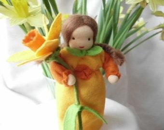 Narcissus - flower child