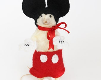 Anthropomorphic Taxidermy white mouse. Master Mouse.