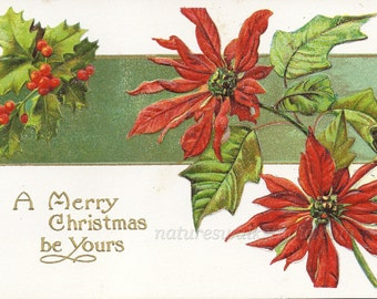 Poinsettia and Holly Christmas Postcard, A Merry Christmas Be Yours, 1915 Handwritten Post Card