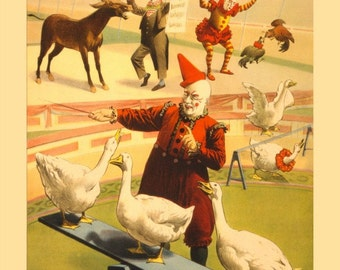 antique victorian circus poster barnum bailey performing geese roosters and donkey illustration DIGITAL DOWNLOAD