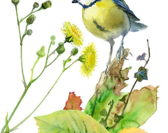 Bird fall print, gicleeFall Poster print with a Blue Tit bird, Digital collage of original watercolor paintings by VerbruggeWaterolor