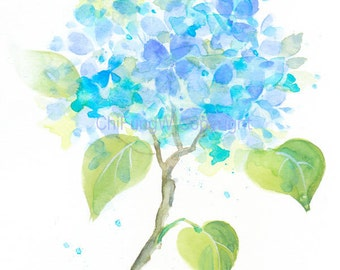 Fine art watercolor painting, flower art, blue Hydrangea WATERCOLOR PRINT, giclee print, flower interest
