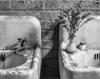 Abandoned Silk Mill - Bathroom Sinks with Flowers - 8x10 11x14 16x20 Black and White Photography Print