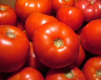 Rutgers Tomato Seeds- Heirloom- 75+ Seeds