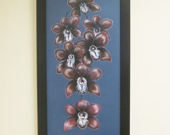 A coterie of orchids