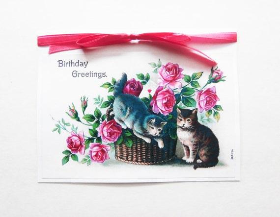 Cat Birthday Card Sweet Birthday Card Cat Greeting Card