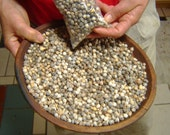 Job's Tears Seeds and Beads