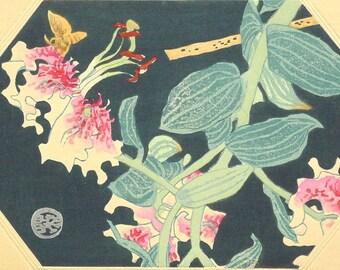 "Ukiyoe, Original Sōsaku-hanga, Woodblock print, antique, Eichi Kotozuka, ""Lilium speciosum"""