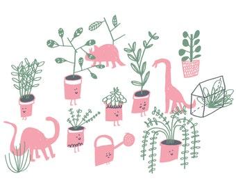 Postcard / terrariums, cactus & funny plants