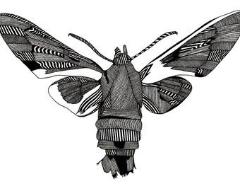 A3 Butterfly Screenprint