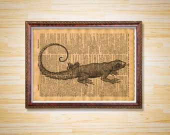 Lizard poster Rustic dictionary page Animal print
