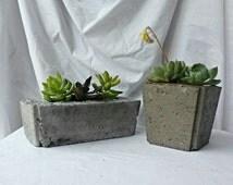 Hypertufa planter/ House plant/ Succulants/ Air plants