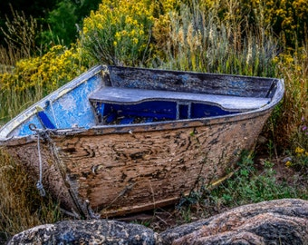 Old Row Boat in a Flower Bed Blank Note Card