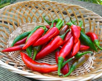 Bulgarian chili pepper fishy, Ribki heirloom pepper 20 seeds