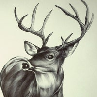 TheInkyDeer