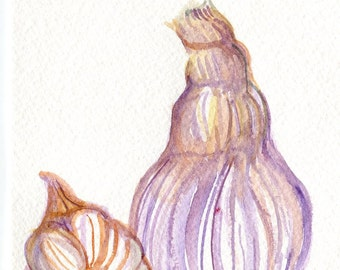 Garlic watercolor painting original, kitchen wall art, Small vegetable artwork. 5 x 7, garlic art,  watercolor painting of garlic
