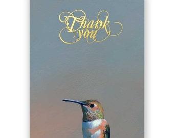Hummingbird Set of 12 Thank You Cards - Blank - Gold Foil - Bird - Set - Gift - Animal - Nature - Mincing Mockingbird