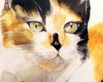 Nellie - Fine Art Print
