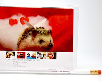 Hedgehog Postcard Stationery Set /// comes with pencil and sticky notes