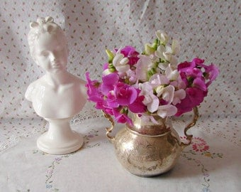 Perennial Sweet Pea Seeds in Hot Pink 50, Light Pink and White featured in Romantic Country, Country Victorian and  other Garden Magazines