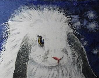 Lop Eared Bunny Rabbit Art by Melody Lea Lamb ACEO Print #152