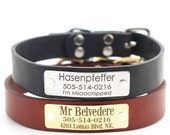 Leather Dog Collar with  Engraved Name Plate -- 3 Classic colors to choose from