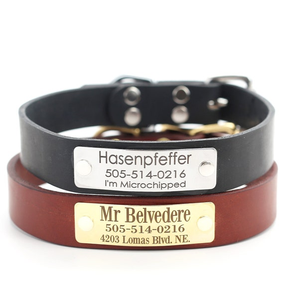 Leather Dog Collar with Engraved Name Plate 3 Classic