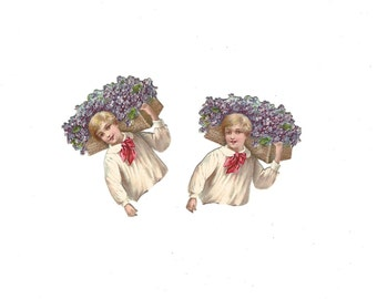 """Vintage German Die Cut Boy """"Bust"""" Carrying Purple Flowers Set of Two Early 1900's Mint Condition"""