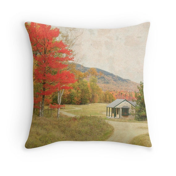 Photo Pillow Cover Fall Color Throw Pillow functional art