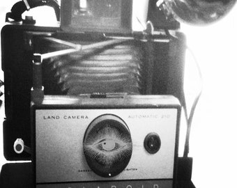 Vintage, Close up, Polaroid, Third Eye, Black and White,  Fine Art, Still Life,  Photograph By Paper-Mâché Dream Photography, fPOE