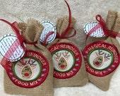 Bag of Magical Reindeer Food