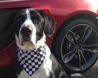 Chequered Flag Grand Prix F1 Dog And Cat Bandana