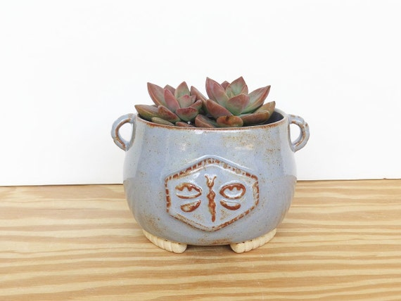 Ceramic Stoneware Dragonfly Succulent Planter Pot in Blue Shino Glaze