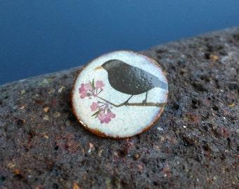 Ceramic Blackbird Brooch