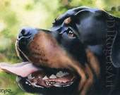 ROTTWEILER Art Print Signed by Watercolor Artist DJ Rogers