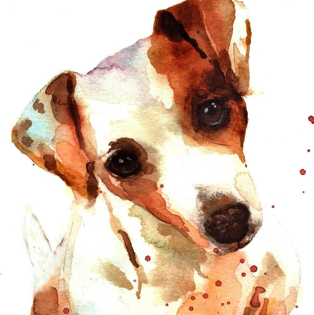 Watercolor Jack Russell Print 8x10 Puppy Art Watercolor