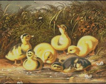 Baby Ducks cross stitch pattern No.794