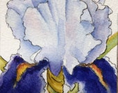 Beautiful Iris Watercolor Art Card Artist Trading Card Original Art
