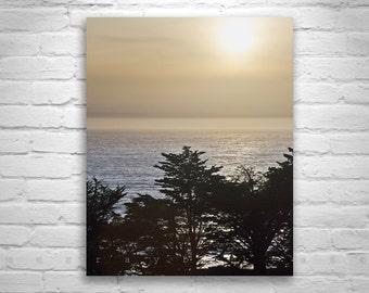 Big Sur Photography, Tree Silhouette, California Art, Ocean Horizon, Black and White, Tree Art, Sunset Art, Seascape Artworks