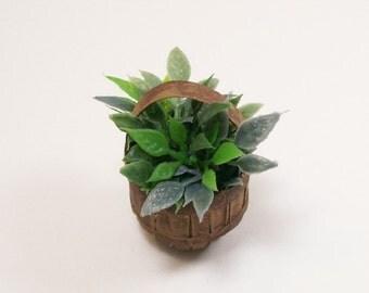 House Plant Basket Greens Floral Arrangement 1:12 Dollhouse Miniature Artisan