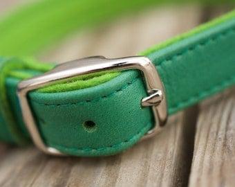 Dog Leather Collar  | RAGTAG (Organic Leather)