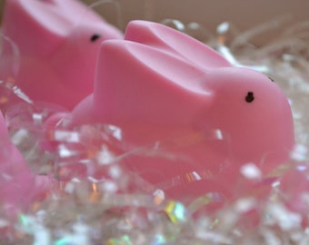 Spring Soap  - Easter Bunny Soap - Children's Soap - Soap for Kids - Springtime - Easter - Bunny Soap - Novelty - Gift Idea - Shower Favor