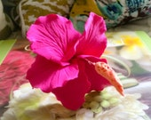Tropical Pink Hibiscus Hair Flower